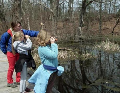 Spot birds, turtles, and more at Broadmoor Wildlife Sanctuary.